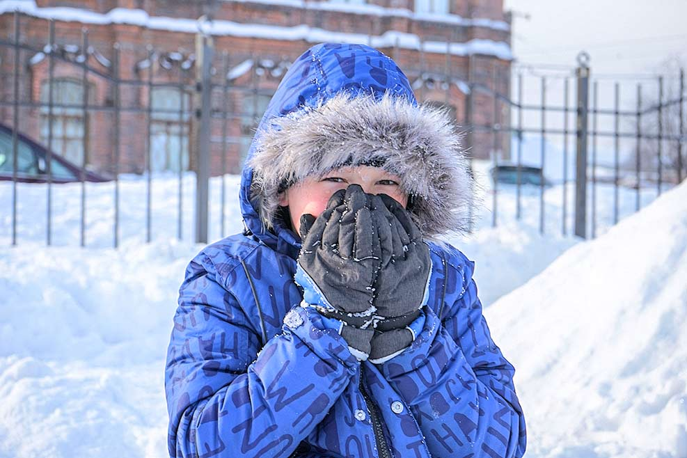 Спутники холодов