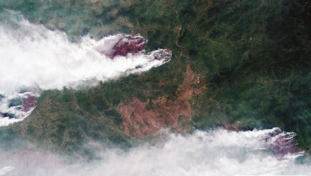 Генеральная прокуратура РФ: Лесные пожары в Сибири устраивались, чтобы скрыть незаконные вырубки