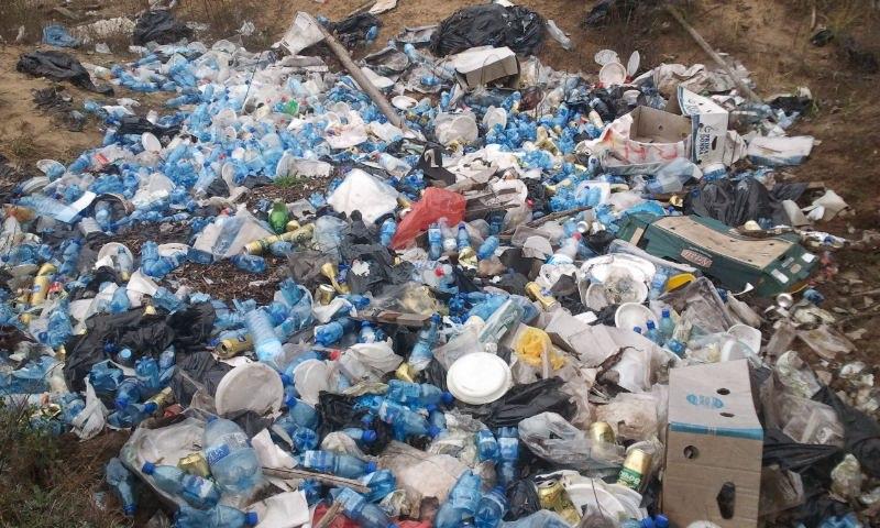 Ответственность поровну: Управляющие компании привлекут к уборке контейнерных площадок