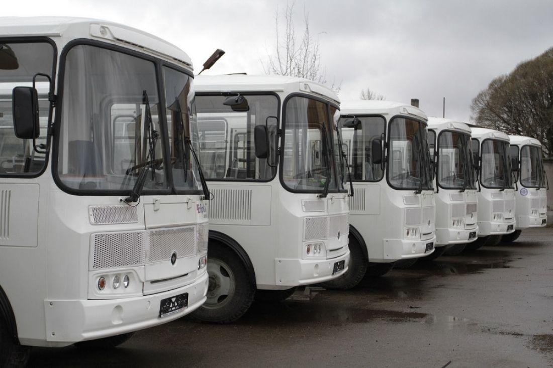 Городские автобусы будут ходить на новогодних каникулах реже