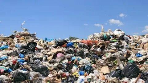Алтайский край попал в топ-7 регионов с критической ситуацией по мусору