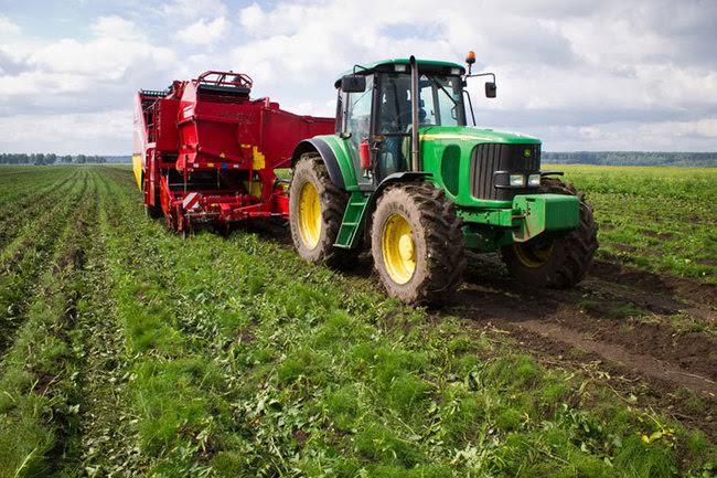 На Алтайский край наложен штраф за невыполнение целевых показателей по развитию сельского хозяйства