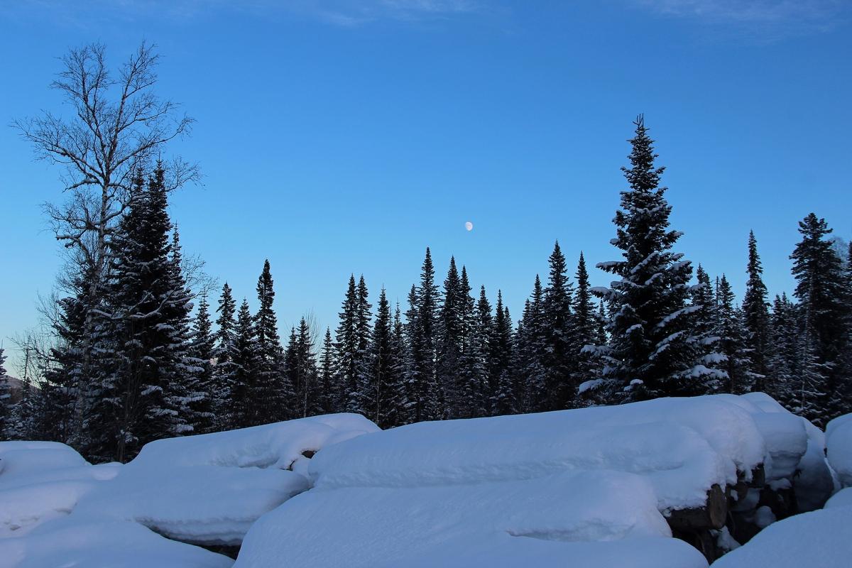 В ночь на 30 января в Алтайском крае ожидается похолодание до -30 градусов
