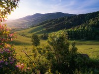 Алтайский край по-прежнему в тройке лидеров экологического рейтинга регионов России