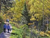 В Алтайском крае запатентовали реабилитацию пациентов после коронавируса