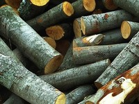 Как заработать деньги на собственных дровах