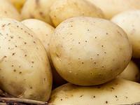 Картошка в Алтайском крае подорожала почти вдвое