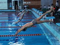Четыре возраста пловцов