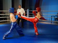 В Бийске состоялся праздничный турнир по кикбоксингу в честь Дня России