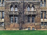 Оксфордские заметки