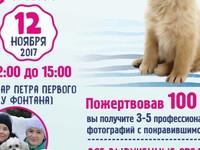 7 собак и 8 кошек обрели новых хозяев на мероприятии «Добрый пес-12»