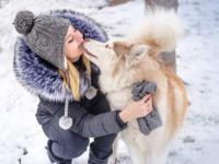Акцию «Добрый пёс» поддержат предприниматели и администрация города