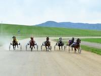 В последний день лета состоится открытие нового ипподрома в Солонешенском районе