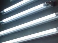 С 1 июля вступил в силу запрет на использование «устаревших» ламп