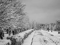 В ближайшие дни в Алтайском крае ожидается продолжительная оттепель