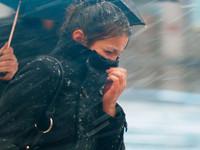 На 23 и 24 января в Алтайском крае объявлено штормовое предупреждение