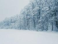 В ближайшие дни в Алтайском крае похолодает до -27 градусов