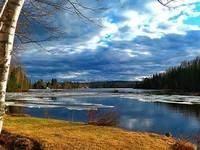 В начале мая в Алтайский край вернутся заморозки