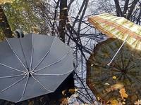 По сообщению Гидрометеоцентра, на Алтайский край надвигается сильный шторм