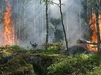 Алтайский край готов к борьбе с наводнением и пожарами
