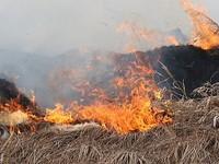 Штормовое предупреждение из-за высокой пожароопасности в Алтайском крае продлено до 30 апреля
