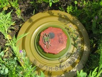 В Бийске найдены две противотанковые мины