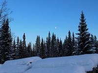 Новогодние каникулы 2018 по прогнозам Росгидромета будут холодными