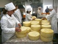 Алтайский край — лидер по производству сыра в России