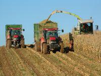 Алтайкрайстат: в регионе растет зарплата работников сельского хозяйства и промышленности