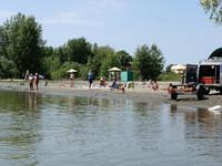 Администрация: Купаться этим летом на пляжах Бийска официально запрещено