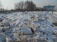 В Алтайском крае прогнозируют зиму холоднее обычного