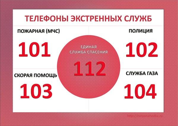 В Бийске изменились номера телефонов экстренных служб | Последние новости Бийска и Алтайского края